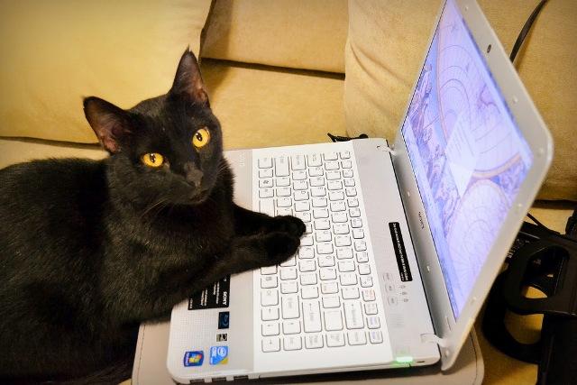 puesta en marcha de un ordenador nuevo en zaragoza